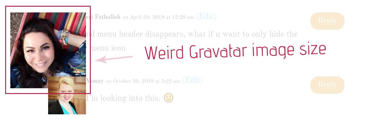 Weird Gravatar Size