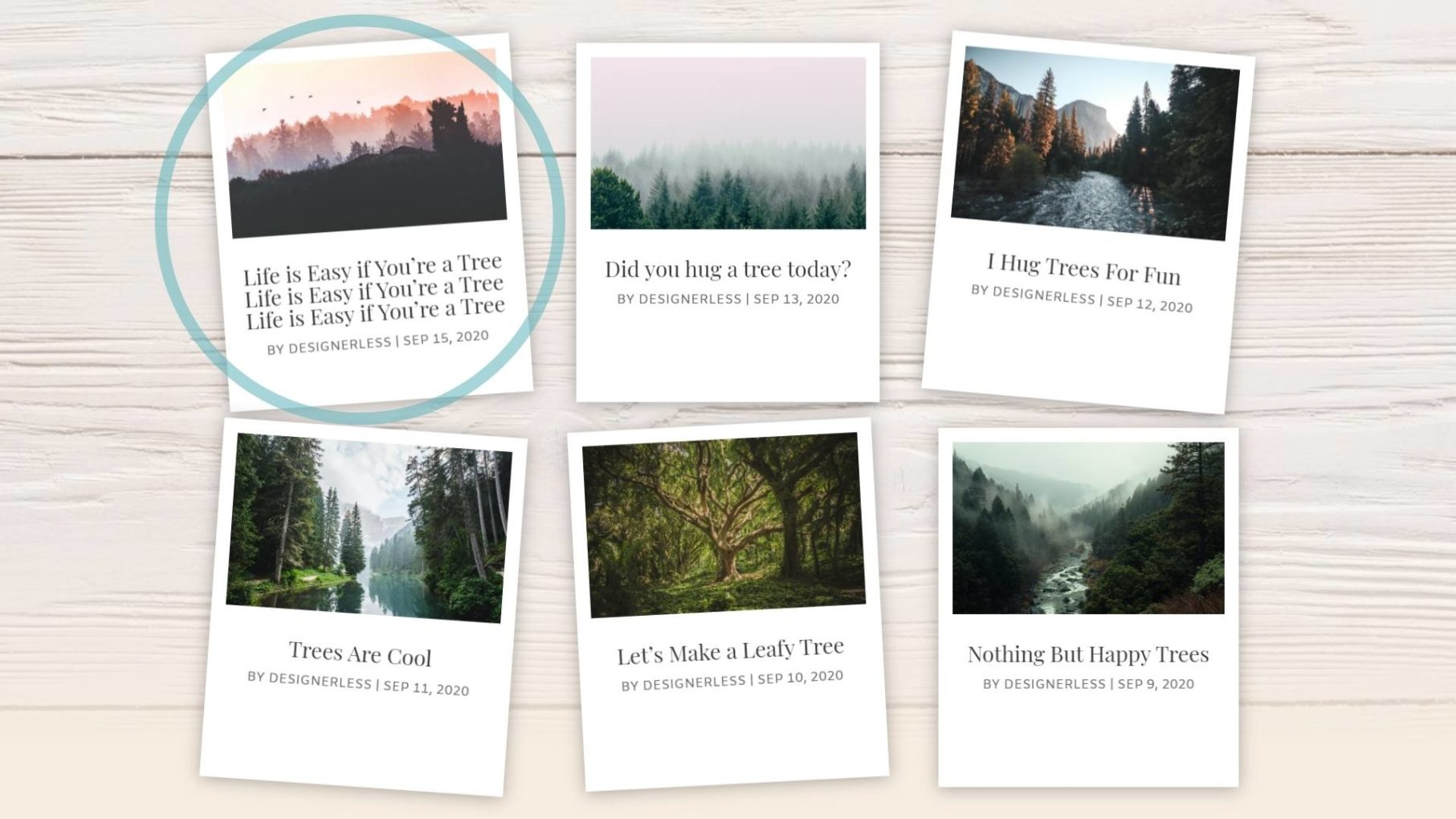 Designerless: Polaroid Blog Cards Overflow Text