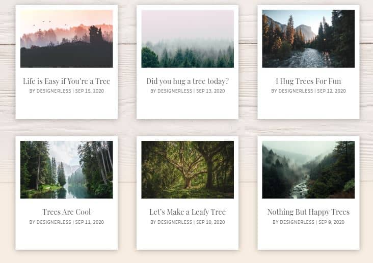 Image: Divi Polaroid Blog Cards Straight Alignment